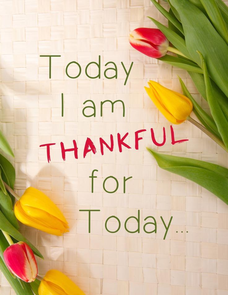 thankful-1081614_1920